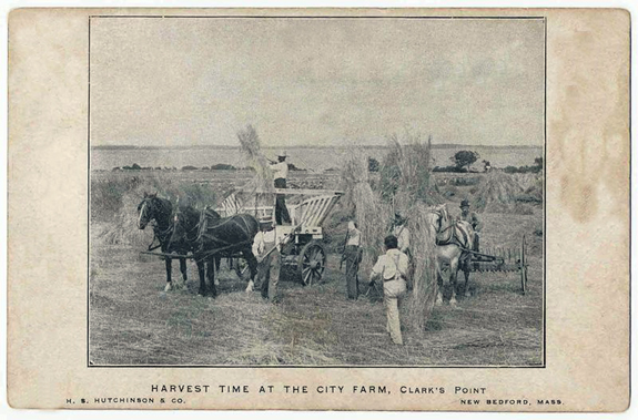 New Bedford Poor Farm 1907 Harvest - www.WhalingCity.net